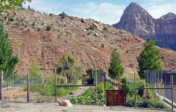 Zion Canyon Community Garden